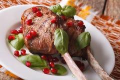 Bifteck de boeuf avec les graines de grenade et le plan rapproché de basilic horizontal Photos libres de droits