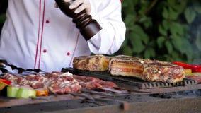 Bifteck de boeuf de poivre de chef clips vidéos
