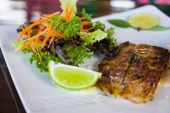 Bifteck de poissons Photos libres de droits