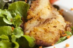 Bifteck de poissons avec de la salade Photo libre de droits