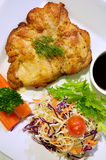 Bifteck et légumes de poulet Image libre de droits