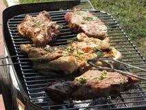 Bifteck et poulet grillés tout entier sur le gril photo stock