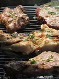 Bifteck et poulet grillés tout entier sur le gril photos libres de droits