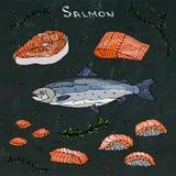 Bifteck, filet, tranches et sushi des saumons rouges de poissons pour le menu de fruits de mer Croquis tiré par la main réaliste  Photo libre de droits
