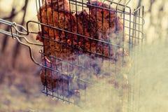 Bifteck juteux avec des épices sur le gril dans la fumée du feu Pique-nique en nature extérieure photographie stock