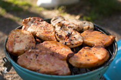 Biftecks de barbecue dans une lumière du jour Images stock
