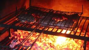 Biftecks faisant cuire sur un gril extérieur banque de vidéos