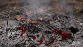 Biftecks sur le gril de barbecue banque de vidéos