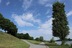 Bifurcación al lado del Danubio Fotografía de archivo libre de regalías