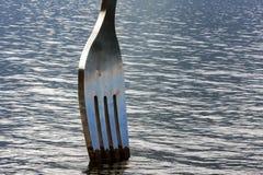 Bifurcación en el lago, primer Imagen de archivo