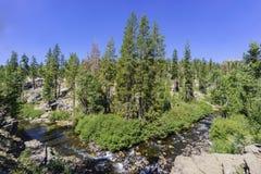 Bifurcación media San Joaquin River Fotografía de archivo libre de regalías