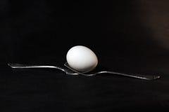 Bifurcación y huevo Foto de archivo