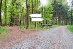 Bifurcation of a footpath in the wood - Choose your way. Empty Sign. German forest Royalty Free Stock Image