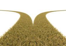Bifurque en el camino de la hierba en el fondo blanco Imágenes de archivo libres de regalías