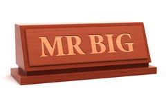 Big先生 向量例证