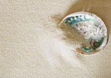 Big abalone shell on white sand Stock Photo