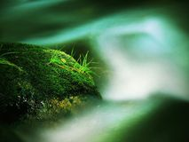 Big abandoned boulder covered by fresh green moss in foamy water of mountain river. Light blurred cold water with reflections, whi Stock Photos