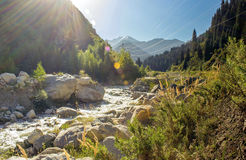 Big Almaty gorge. Stock Photo