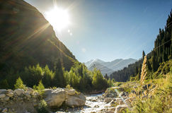 Big Almaty gorge. Royalty Free Stock Photos