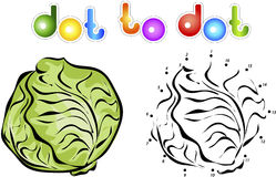Big And Ripe Cabbage. Educational Game For Kids: Connect Numbers Royalty Free Stock Photo