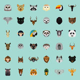 Big animal color flat set on color background Royalty Free Stock Images