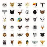 Big animal color flat set on white background Royalty Free Stock Photos