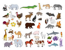 Big animals set, illustration with animals collection isolated on white background Royalty Free Stock Photos