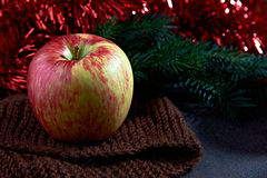 Big apple and pine on blured background Stock Photography