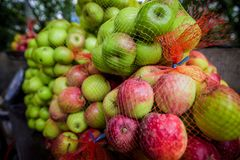 Big red and green apple were packing in bag together royalty free stock photo