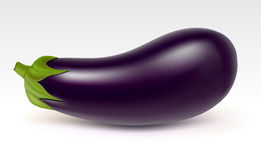 Big aubergine Royalty Free Stock Photography
