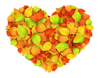 Big autumn heart Stock Photos