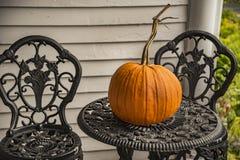 Big autumn pumpkin Royalty Free Stock Image