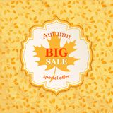 Autumn Sale background. Banner template. Big Autumn Sale background. Vector banner template illustration Royalty Free Stock Images