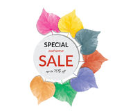 Big autumn sale with beautiful colorful leaves. Stock Photo