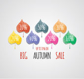 Big autumn sale with beautiful colorful leaves. Royalty Free Stock Photos