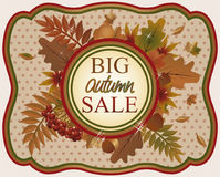 Big autumn sale card, vector Stock Images