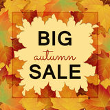 Big Autumn sale design. Big Autumn sale square banner. Can be used for flyers, banners or posters. Vector illustration with colorful autumn leaves. Fall sales Stock Photography