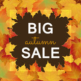 Big Autumn sale design. Big Autumn sale square banner. Can be used for flyers, banners or posters. Vector illustration with colorful autumn leaves. Fall sales Stock Images