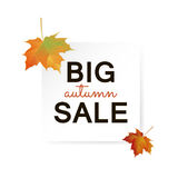 Big Autumn sale design. Big Autumn sale square paper banner. Can be used for flyers, banners or posters. Vector illustration with colorful autumn leaves. Fall Royalty Free Stock Photography