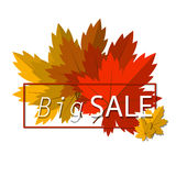 Big Autumn sale. Fall sale design. Three banners Royalty Free Stock Images