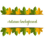 Big Autumn sale. Fall sale design. Three banners Stock Photography