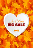 Big Autumn Sale Flyer Design Royalty Free Stock Images