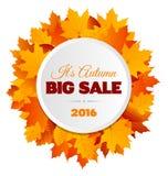 Big Autumn Sale Flyer Design Stock Photography