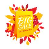 Big autumn sale inscription design. Fall leaves yellow paper bag. Big autumn sale inscription design template. Up to 50% off. Autumn fall leaves and berries with stock illustration