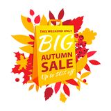 Big autumn sale inscription design. Fall leaves yellow paper bag. Big autumn sale inscription design template. Up to 50% off. Autumn fall leaves and berries with royalty free illustration