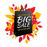 Big autumn sale inscription design. Fall leaves black paper bag. Big autumn sale inscription design template. Up to 50% off. Autumn fall leaves and berries with vector illustration