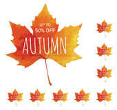 Big autumn sale. Shopping. Colorful watercolor leaf. Stock Images