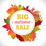 Big autumn sale. Autumn typographical background with autumn leaves. Fall leaf. Vector illustration EPS 10 Royalty Free Stock Photography
