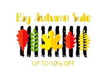 BIG AUTUMN SALE up to 50 OFF banner design. Fat style autumn leaves and hand drawn brush stroke. Creative lettering for seasonal sales. Vector illustration royalty free illustration