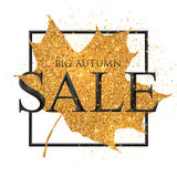 Big autumn SALE vector black sign on golden dust fall maple leaf background Stock Photography
